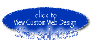 Business Solutions for the Internet / Sims Solutions