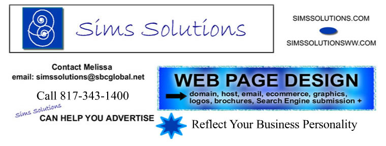Sims Solutions Web Design